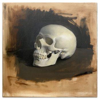 skull_study_web